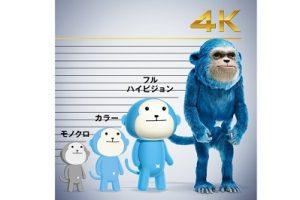 「ひかりTV」の4K説明